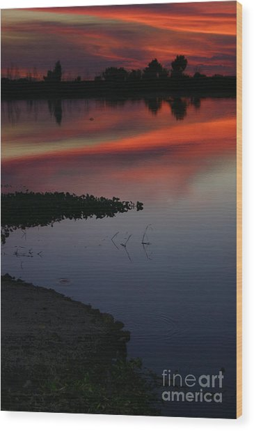Parana Sunset Wood Print