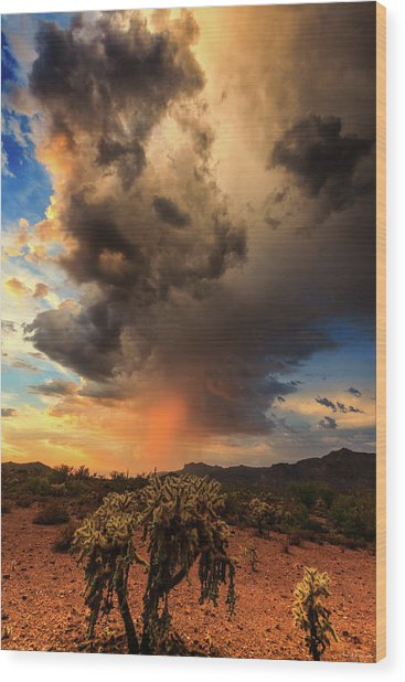 Wood Print featuring the photograph Parched by Rick Furmanek
