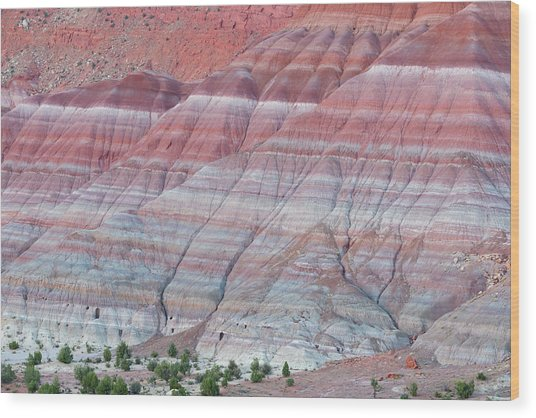Wood Print featuring the photograph Paria Canyon by Chuck Jason