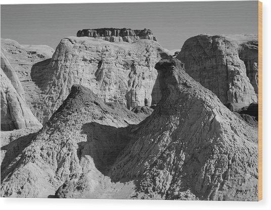 Paria Utah IIi Wood Print by Dave Gordon