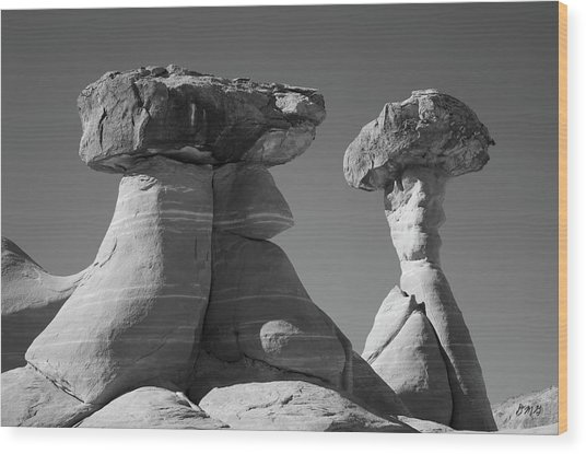 Paria Utah Xiii Bw Wood Print