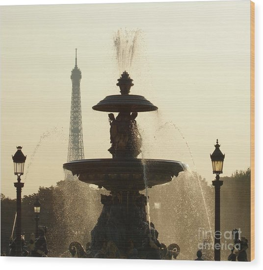 Paris Fountain In Sepia Wood Print