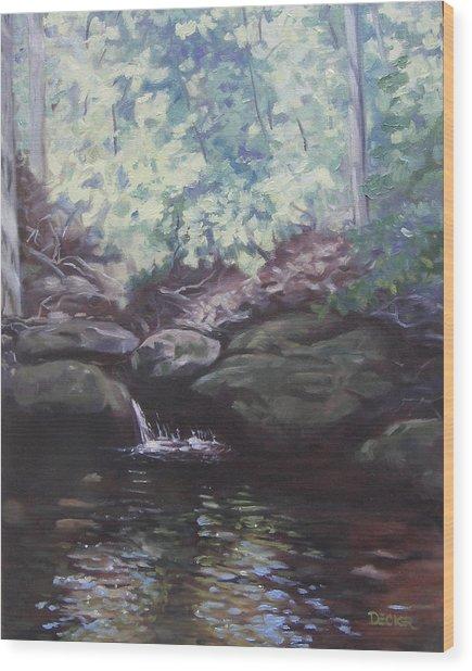 Paris Mountain Waterfall Wood Print