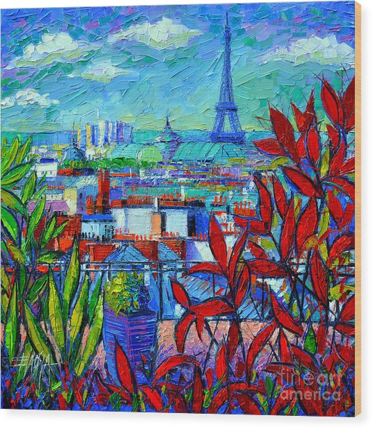 Paris Rooftops - View From Printemps Terrace   Wood Print