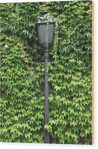 Parisian Lamp And Ivy Wood Print