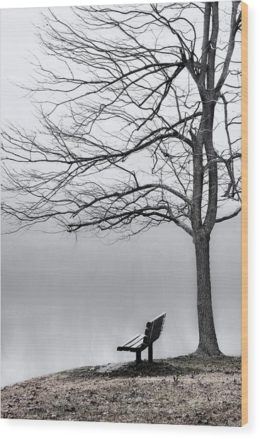 Park Bench And Leafless Tree In Fog - Hi-key Wood Print