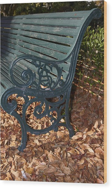 Park Bench In Autumn Wood Print by Geoff Bryant