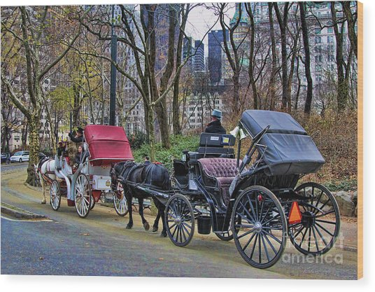 Park Carriage  Wood Print