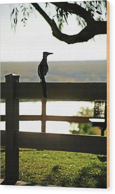 Park Roadrunner Wood Print