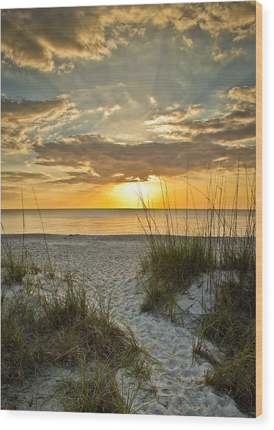 Park Shore Sunset Wood Print