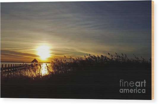 Wood Print featuring the photograph Park Sunset 3 by Patti Whitten