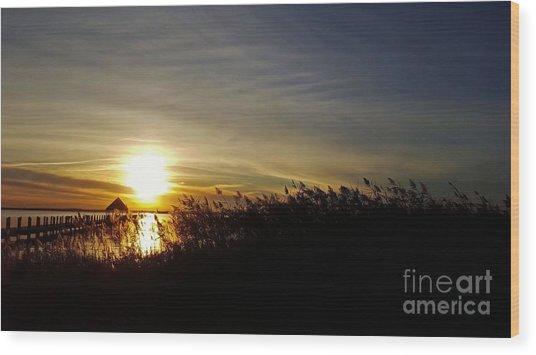 Park Sunset 3 Wood Print