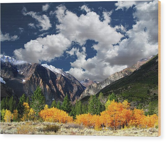 Parker Canyon Fall Colors California's High Sierra Wood Print