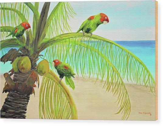 Parrot Beach Wood Print