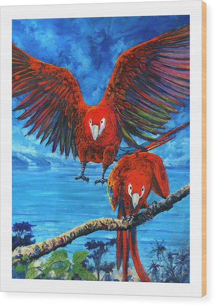 Parrots In Costa Rica Wood Print