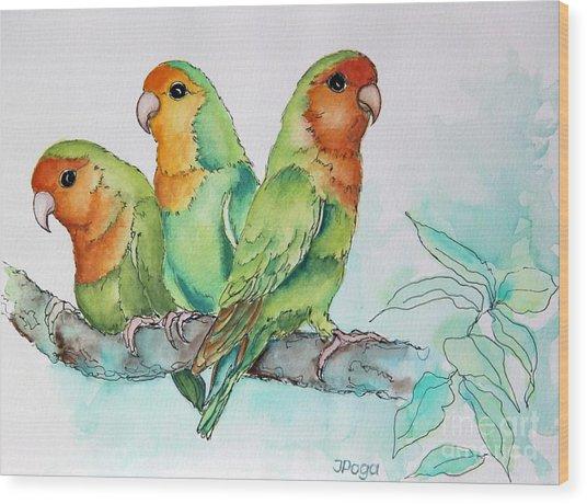 Parrots Trio Wood Print