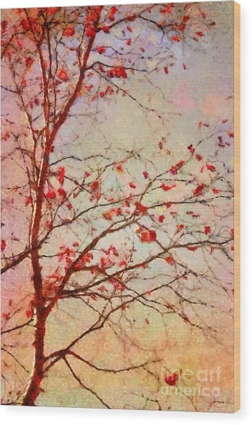 Parsi-parla - D04c03t01 Wood Print