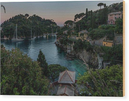 Wood Print featuring the painting Portofino Bay by Enrico Pelos