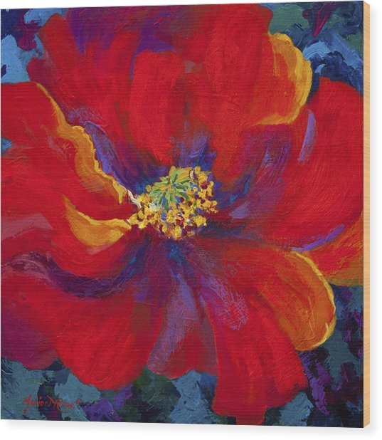 Passion - Red Poppy Wood Print