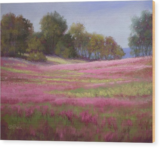 Passion Field Wood Print by Paula Ann Ford