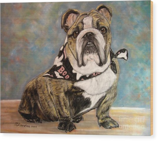 Pastel English Brindle Bull Dog Wood Print