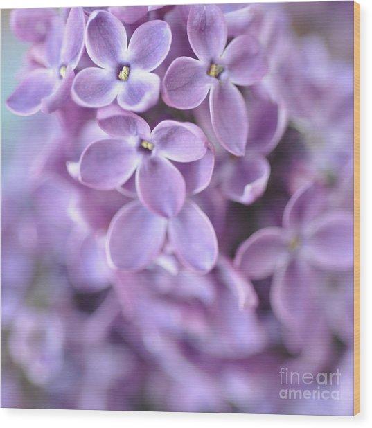 Pastel Lilacs Wood Print