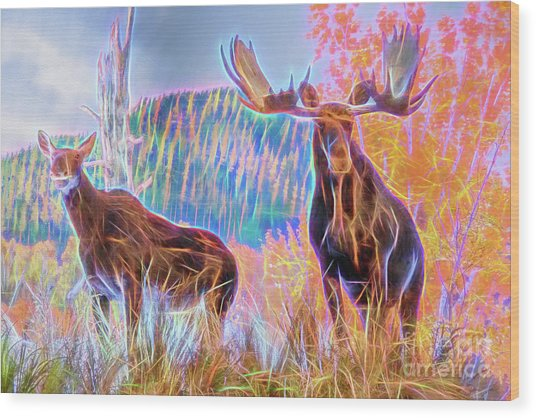 Wood Print featuring the photograph Pastel Moose Couple by Ray Shiu