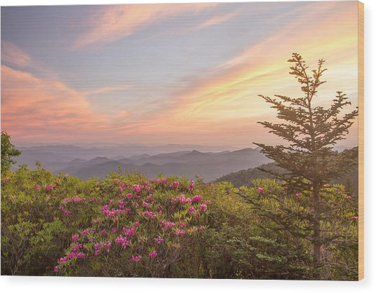Pastel Sky Wood Print by Doug McPherson