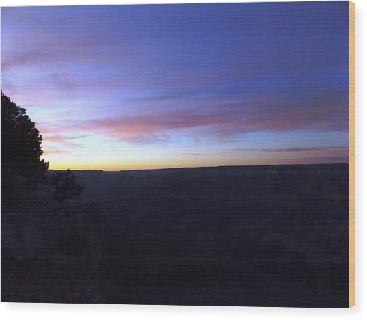 Pastels At Dark Wood Print