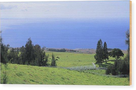 Pasture By The Ocean Wood Print