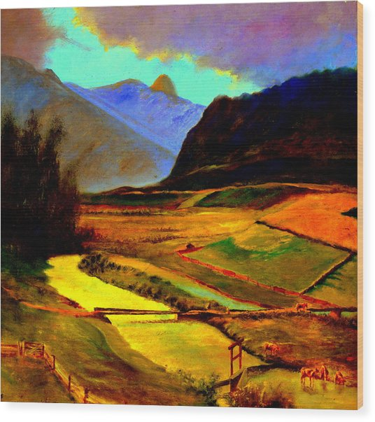 Pasture In The Mountains Wood Print