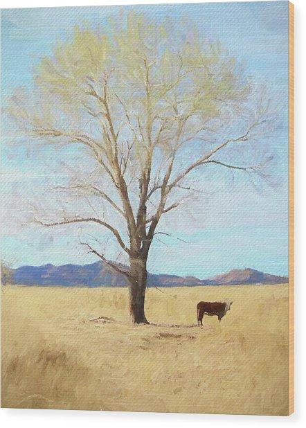 Patagonia Pasture 2 Wood Print