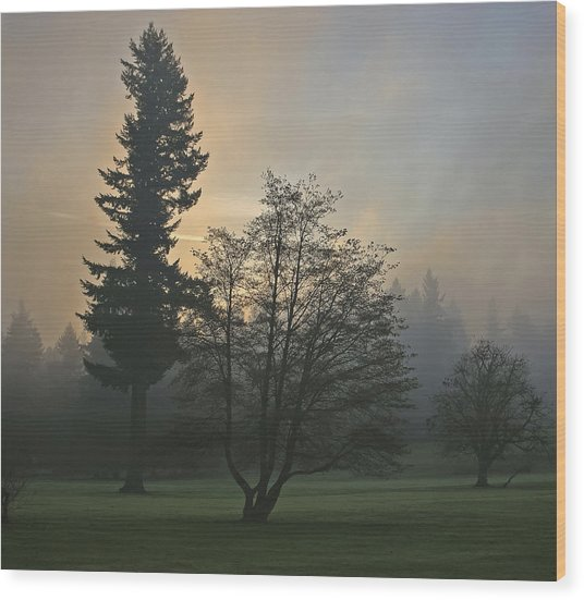 Patchy Morning Fog Wood Print