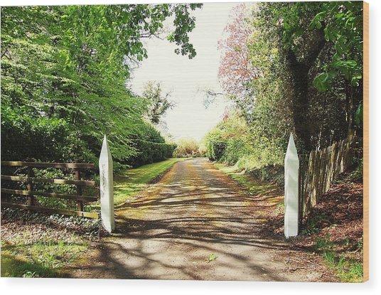 Path Ahead Wood Print