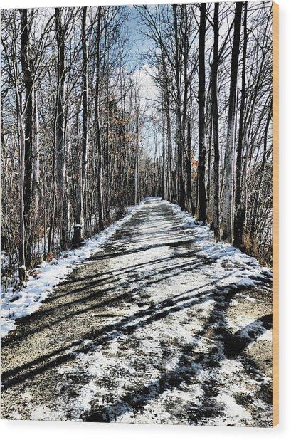 Path In Winter Wood Print
