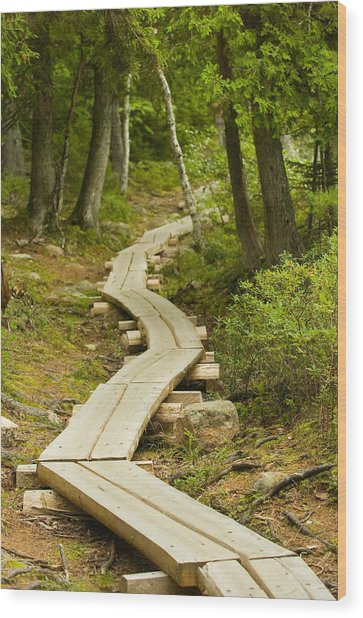 Path Into Unknown Wood Print