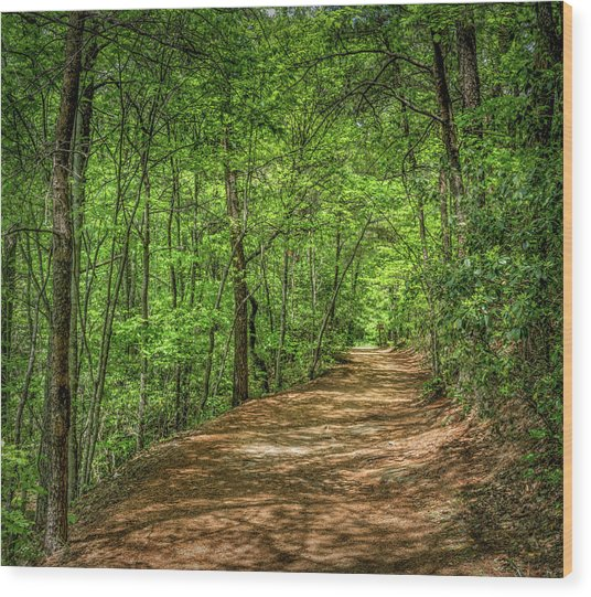 Path Less Travelled Wood Print