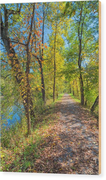 Path Through Fall Wood Print