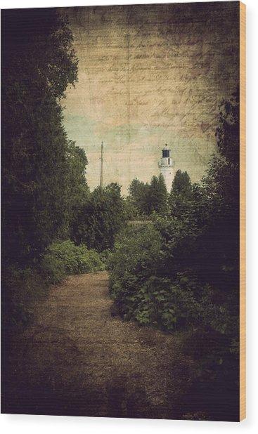 Path To Cana Island Lighthouse Wood Print