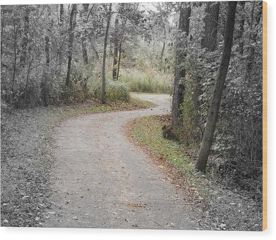 Path To Discovery Wood Print