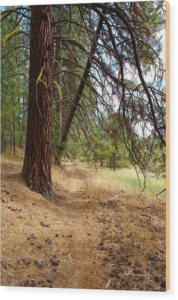 Path To Enlightenment 2 Wood Print