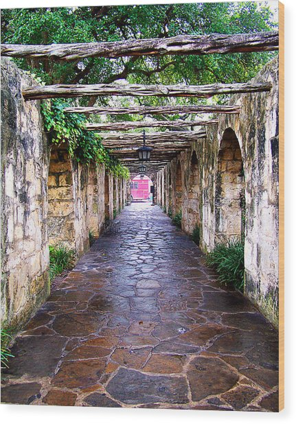 Path To The Alamo Wood Print