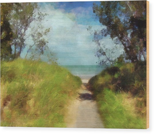 Path To Whihala Beach 2 - Limited Edition Wood Print