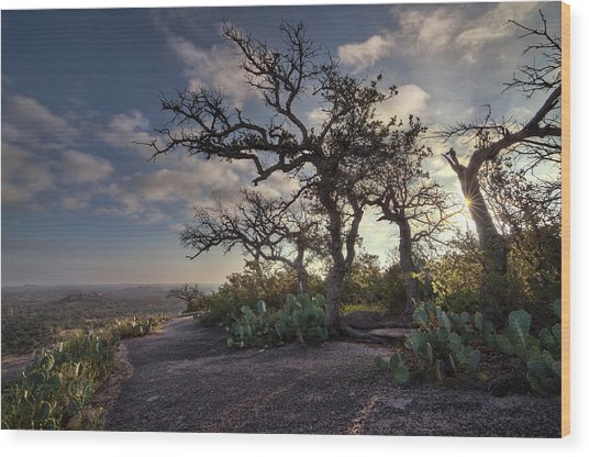 Pathway On Top Of Enchanted Rock Wood Print