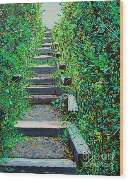 Pathway To Puget Sound Wood Print by Stephen Ponting