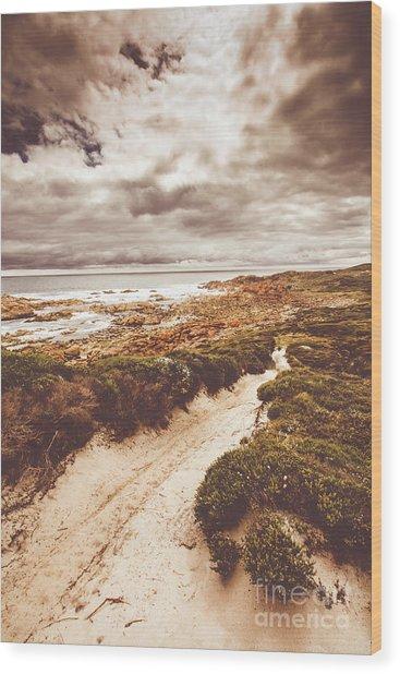 Pathways To Seaside Paradise Wood Print
