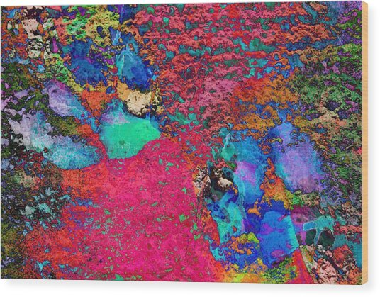 Paw Prints Colour Explosion Wood Print