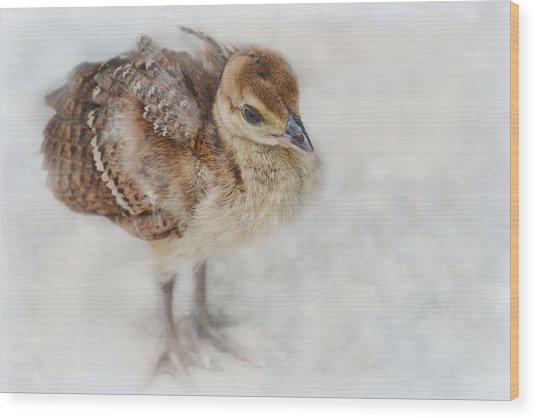 Pea Chick Cuteness Wood Print