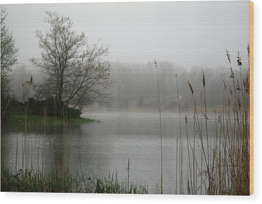 Peaceful Calm Wood Print by Erika Lesnjak-Wenzel