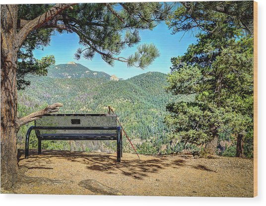 Peaceful Encounter Wood Print
